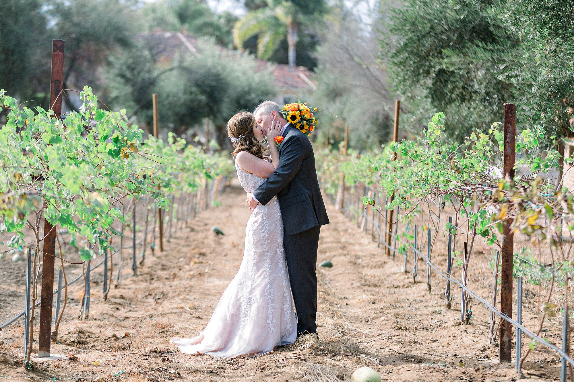 Bernardo Winery Is A Fully Functioning 121 Year Old That Still Producing Wine Today It Honestly San Go Wedding Photographer S Dream