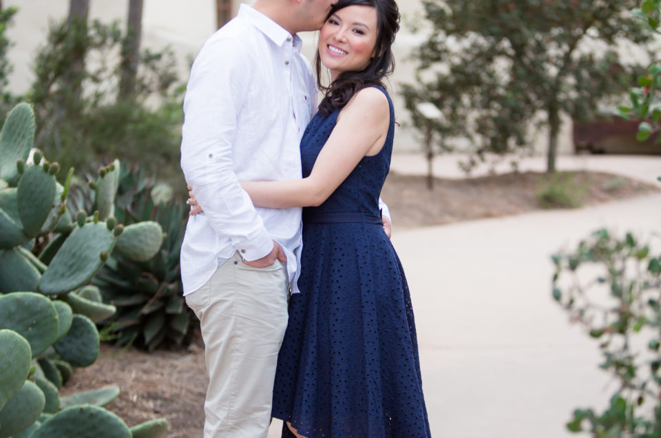 Torrey Pines State Park Reserve Engagement Session | Jean + Hsing